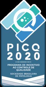 PICQ 2020